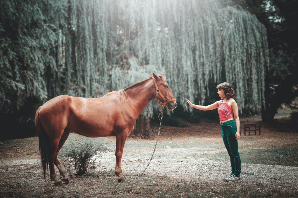La relation que l'on a avec l'animal est elle psychothérapeutique ? caroline vieilleribiere psychologue psychothérapeute à Mont de marsan nous donne son avis